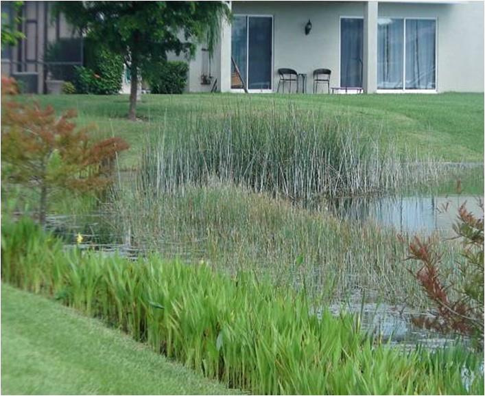 WETPLAN Good Pond